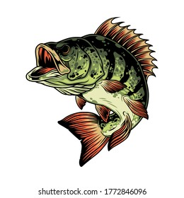 Colorful angry perch fish template in vintage style isolated vector illustration