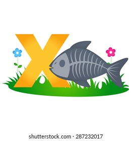 Colorful animal alphabet letter X with a cute x ray fish flash card isolated on white background