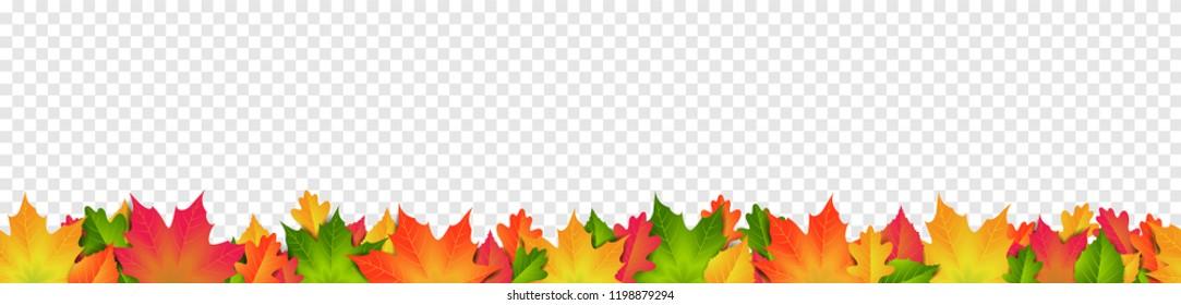 Fall Leaves Border Transparent Background Stock Illustrations Images Vectors Shutterstock