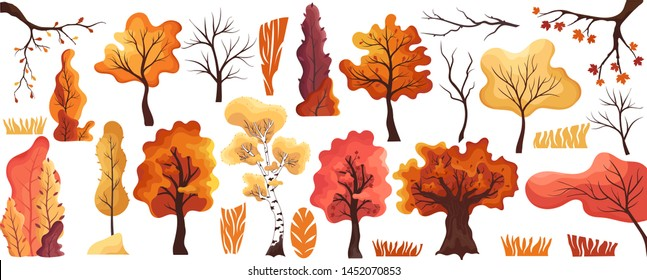 Colorful autumn trees flat set.Collection maple,oak,birch,bushes,grass.Cartoon yellow orange fall tree and autumnal garden bush icon with fall season gold leaves for city park and forest landscape