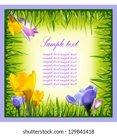 Colorful background with flowers and grass. Vector illustration.