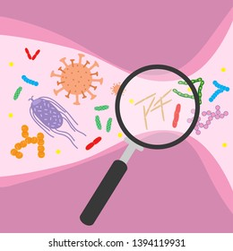 Colorful bacterial microorganism in magnifying glass. Bacteria and germs set, micro-organisms disease-causing objects, cell cancer, bacteria, viruses, fungi, protozoa. Vector flat cartoon illustration