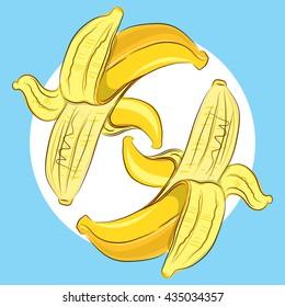 Colorful banana vector image