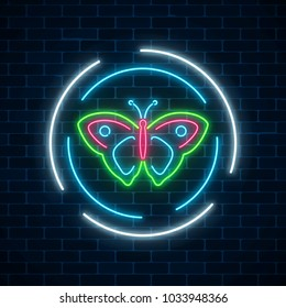 Colorful batterfly glowing neon sign in round frames on dark brick wall background. Spring flyer emblem in circle. Night street advertising symbol. Vector illustration.