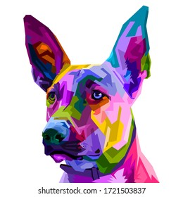 colorful Belgian Malinois dog isolated on pop art style. vector illustration.