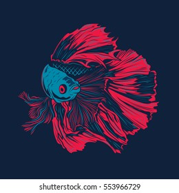 Colorful Betta Fish Vector Illustration. Siamese Fighting Fish. Betta Splendens.