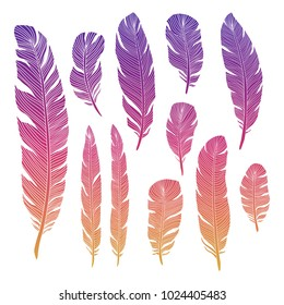 Colorful birds feathers of set isolated on white backgrond. Vector illustration