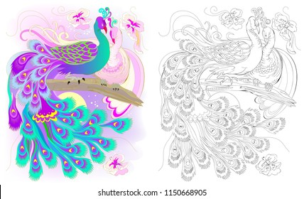 Colorful and black and white pattern for coloring. Fantasy drawing of peacocks couple. Worksheet for children and adults. Vector image.