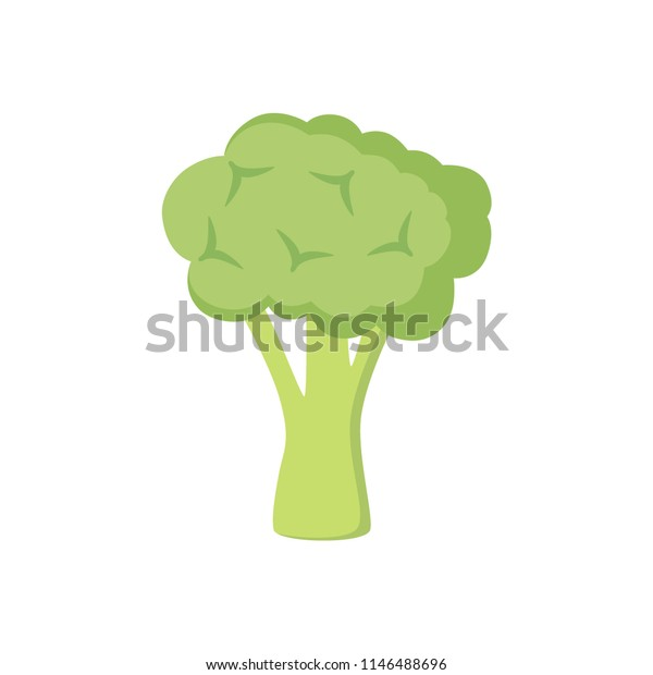 Colorful broccoli clipart cartoon. Broccoli vector illustration.