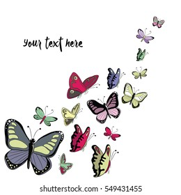 Colorful butterflies flying. Vector illustration on white background with place for your text