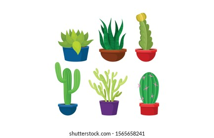 Colorful Cactuses Growing in a Pot Vector Set