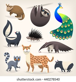 Colorful cartoon animals from different regions and places