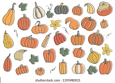 Colorful cartoon contour set of pumpkins with flower and leaves. Templates collection of squash and gourd for harvest, thanksgiving day and halloween hand drawn isolated on white