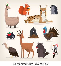 Colorful cartoon highland and midland forest animals from torrid and temperate zones