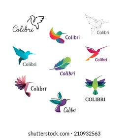 Colorful Colibri. Hummingbirds Logo