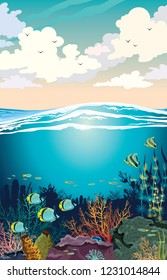 Colorful coral reef with school of fish and sunset sky with cumulus clouds. Vector seascape illustration. Underwater marine wildlife.