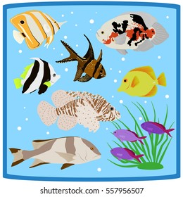 Colorful coral reef tropical fish flat icons vector illustration