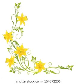 Colorful daffodils decoration, easter and spring vector element.