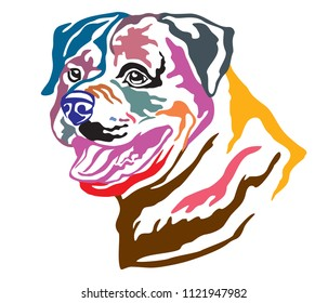 Colorful decorative portrait of Dog Rottweiler, vector illustration in different colors isolated on white background. Image for design and tattoo.