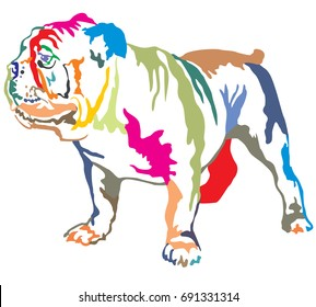 Colorful decorative portrait of standing in profile English bulldog, vector isolated illustration on white background