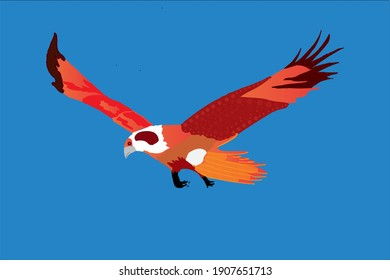 Colorful Eagle illustration, Vector image. Location Dieng, Wonosobo, Central Java, Indonesia.