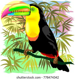 Colorful Exotic Toco Toucan, Wild Bird from Amazonia Rainforest, created on Vector Graphic Art Technique.