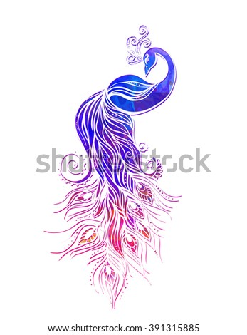 Colorful Fashion Card Peacock Color Bird Stock Vector Royalty Free
