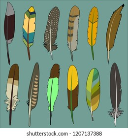 colorful feather drawings | set of 12 | vector art