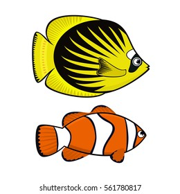 Colorful fish cartoon. Orange clown and yellow butterfly fish.