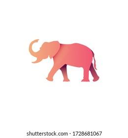Colorful Flat Design of Animal