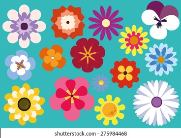 Colorful Flowers 15 Package