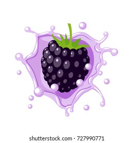 Colorful fruit design. Blackberry in lilac-colored milk splash burst. Vector illustration cartoon flat icon isolated on white.