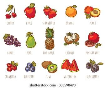 colorful fruits set