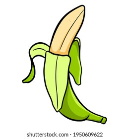 Colorful green banana. A bunch of bananas. For design and decoration.