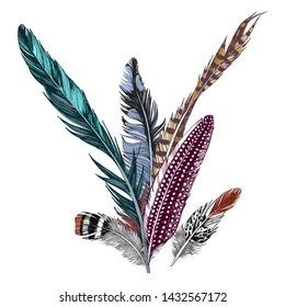 Colorful hand drawn feathers on white background. Vector illustration