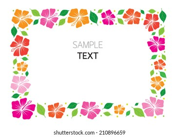 Colorful  Hibiscus Frame