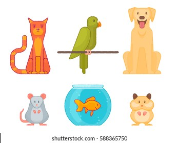Colorful Home pet vector set. Cat, dog, mouse, budgie, hamster and aquarium with fish isolated on white background.