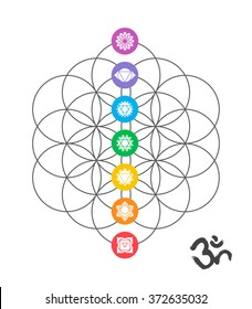 Colorful icons, main chakras on flower of life. Sacred geometry illustration with handmade om calligraphy decoration. EPS10 vector.