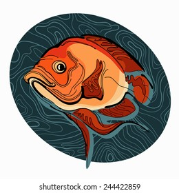 Colorful illustration of fish 2
