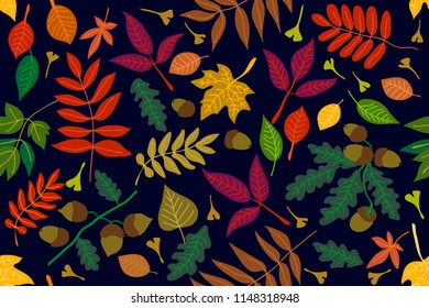 Colorful leaves and acorns on black background. Autumn forest. Seamless panoramic vector pattern with botanical motifs.