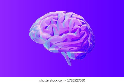 Colorful low poly human brain and wireframe vector illustration on purple background