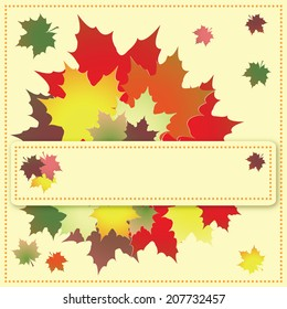 Colorful maple leaves on the greeting card. Vector illustration.