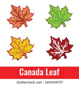 Colorful maple leaves on a white background Hand painted is a design work for decoration. In the spring