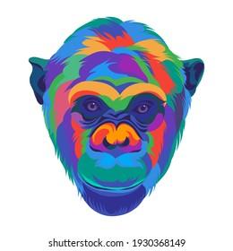 colorful monkey head on white background
