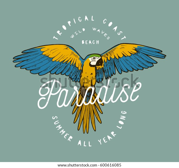 colorful-paradise-parrot-grunge-label-60
