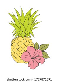 Colorful Pineapple and hibiscus, hand drawn vector illustration