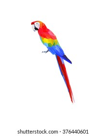 Colorful polygon Parrot