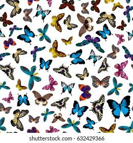 Colorful print pattern seamless butterflies. Butterflies print pattern seamless isolated on white. Vector print pattern seamless illustration eps10