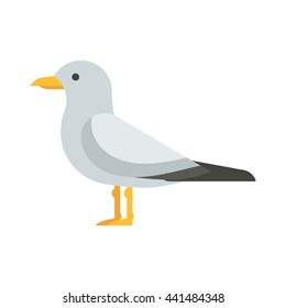 Colorful seagull bird vector illustration. Sea gull icon in flat design. Seabird isolated on white background.