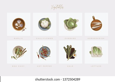 A colorful set of vegetable icons in flat lay setting